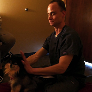 Mike McGuigan reiki for dogs